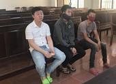 Kháng án, ba bị cáo được hưởng án treo