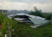 Bị phạt 9 tháng tù vì phá hủy nhà kho bỏ trống