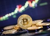 Lo vỡ bong bóng bitcoin khiến nhà đầu tư trắng tay