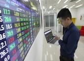 Nhà đầu tư cá nhân nâng đỡ thị trường chứng khoán