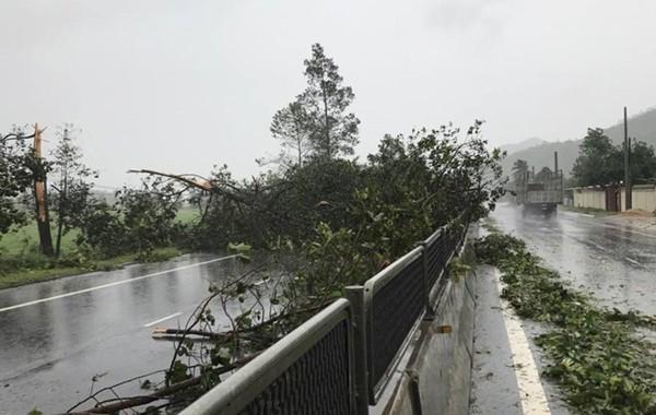 Một số hình ảnh ở Nha Trang bị bão số 12 tàn phá - ảnh 6