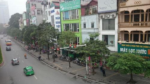 Cận cảnh hàng cây xanh trên đường đẹp nhất Việt Nam trước giờ bị đốn hạ
