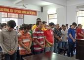 Hậu Giang xử 39 bị cáo đá gà ăn tiền