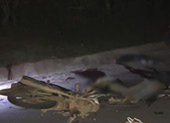 Xe máy đối đầu, 4 thiếu niên chết tại chỗ