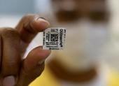 WHO nỗ lực sớm báo cáo khả năng thuốc sốt rét ngừa COVID-19