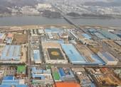 Các công ty Hàn Quốc yêu cầu công nhân tự cách ly ở nhà