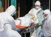 Chưa phát hiện người Việt tại Hàn Quốc nhiễm COVID-19