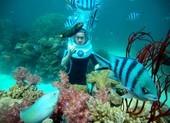 Phú Quốc triển khai kích cầu du lịch với nhiều ưu đãi hấp dẫn