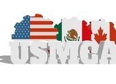 Hiệp định thương mại thay NAFTA 'qua ải' Thượng viện Mexico