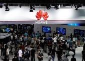 Ông Trump: Không ân xá toàn bộ cho Huawei
