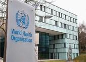 WHO kêu gọi cam kết chính trị toàn cầu ngăn chặn COVID-19