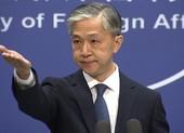 Trung Quốc dừng hiệp ước dẫn độ giữa Hong Kong với 'Tam Nhãn'