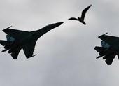Nga điều 8 tiêm kích chặn máy bay ném bom của Mỹ ở biển Đen