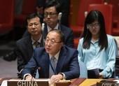 Trung Quốc phản pháo Mỹ tại Liên Hợp Quốc: Quá đủ rồi!