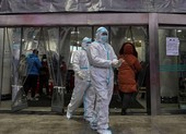 Nhóm điều tra của WHO sẽ đến Trung Quốc vào ngày 14-1