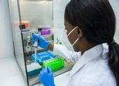 WHO: người khỏi COVID-19 tái nhiễm biến chủng SARS-CoV-2 mới
