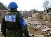 Ukraine lên kế hoạch mới giải quyết xung đột ở Donbass