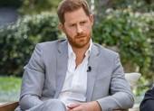 Hoàng tử Harry trở thành giám đốc một công ty khởi nghiệp