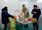 Đồng ý cho nhân viên Mỹ sang VN 'giải cứu' ách tắc trái cây