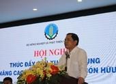 Gạo Việt Nam thua gạo Campuchia vì... phân bón?