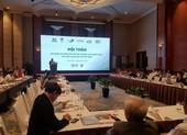 Nguồn cung gỗ nhiệt đới của Việt Nam đa số ở vùng rủi ro