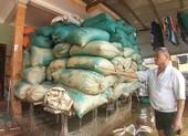 100 tỉ đồng phục hồi sản xuất miền Trung