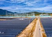 Đưa dự án điện mặt trời 12.000 tỉ đồng vào hoạt động