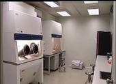 5 phòng thí nghiệm thú y được cho phép xét nghiệm COVID-19