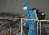 Đà Nẵng: Bệnh nhân 416 vẫn đang được điều trị