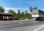 Hai anh em trên đường đi học về quê bị xe tải tông thương vong