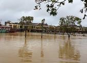 Quảng Nam: Tin lũ khẩn cấp trên sông Vu Gia, Thu Bồn