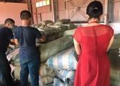 Nóng: 103 tấn dược liệu đội lốt củ cải nhập vào Đà Nẵng