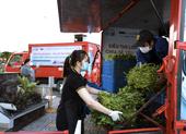 Gói rau củ 6,5 ký chỉ 50.000 đồng xuất hiện ở TP.HCM