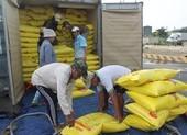 Thanh tra Chính phủ lập xong đoàn thanh tra xuất khẩu gạo