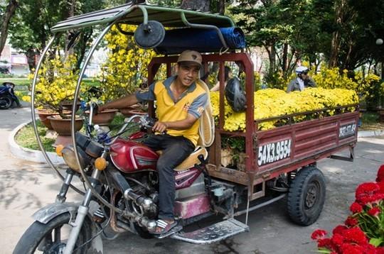 Nếu khách mua một cặp, giá chỉ còn 30.000 đồng/cặp. Giá quá rẻ, nhiều người còn thuê cả xe ba gác để chở hoa.