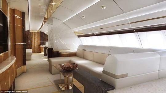Thiết kế được tối ưu hóa cho mục đích thư giãn. Chủ nhân máy bay có thể thoải mái ngả lưng xem truyền hình trong suốt cã chuyến bay dài.