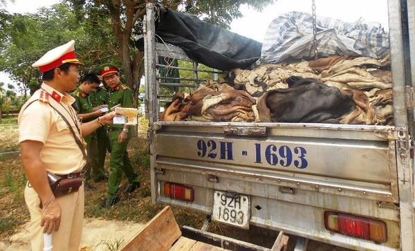 Gần bốn tấn da trâu, bò trên xe tải bị phát hiện và bắt giữ. Ảnh: CTV