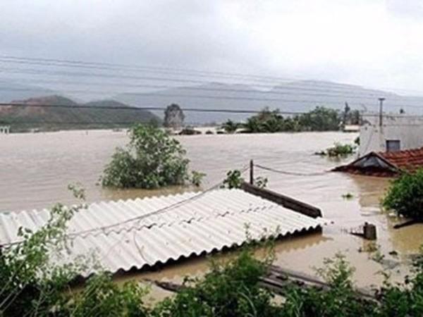 Lũ ở Bình Định dâng lên nóc nhà (Ảnh: Báo Bình Định, AFP)