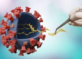 Bộ Y tế bác thông tin virus COVID-19 nhiễm phóng xạ, gây đông máu