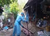 TP.HCM phát hiện ổ dịch tả heo châu Phi đầu tiên