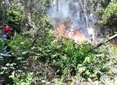 Hàng trăm người chữa cháy rừng ở Đà Nẵng