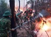Một phụ nữ bị triệu tập vì nghi đốt rác gây cháy rừng