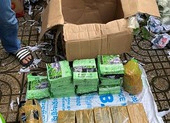 Thu gần 50 kg ma túy trong nhà của nhóm tội phạm ở Gò Vấp