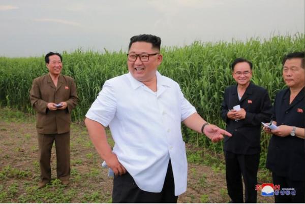 Lãnh đạo Triều Tiên Kim Jong-un thăm huyện Sindo, tỉnh Bắc Pyongan. Ảnh được KCNA công bố ngày 30-6