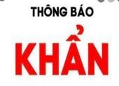 Khẩn: Ai đến chợ đầu mối Hóc Môn, Bình Điền và Sơn Kỳ cần khai báo y tế
