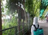 Thảo Cầm Viên được phun khử trùng, duy trì hoạt động