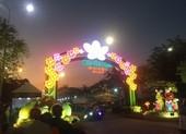 Tết Nguyên đán 2021, TP.HCM dự kiến tổ chức 179 chợ hoa