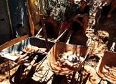 Hầm vàng hơn 100 m ngụy trang trong rẫy chanh dây