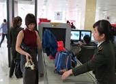 Phạt 3 nhân viên hàng không vì 'lọt' hành khách cấm bay