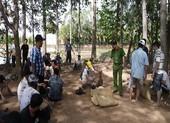 Bắt 36 người tụ tập đá gà ở vườn sao tại TP Long Xuyên